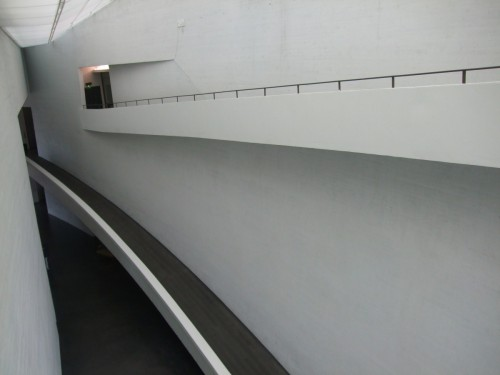 DSCF6596